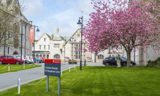 The Management Centre